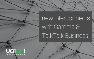 Vaioni Wholesale Interconnects with Gamma and TalkTalk
