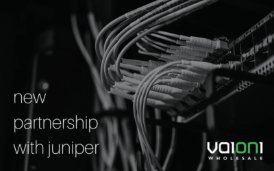 Vaioni invests in premium routers